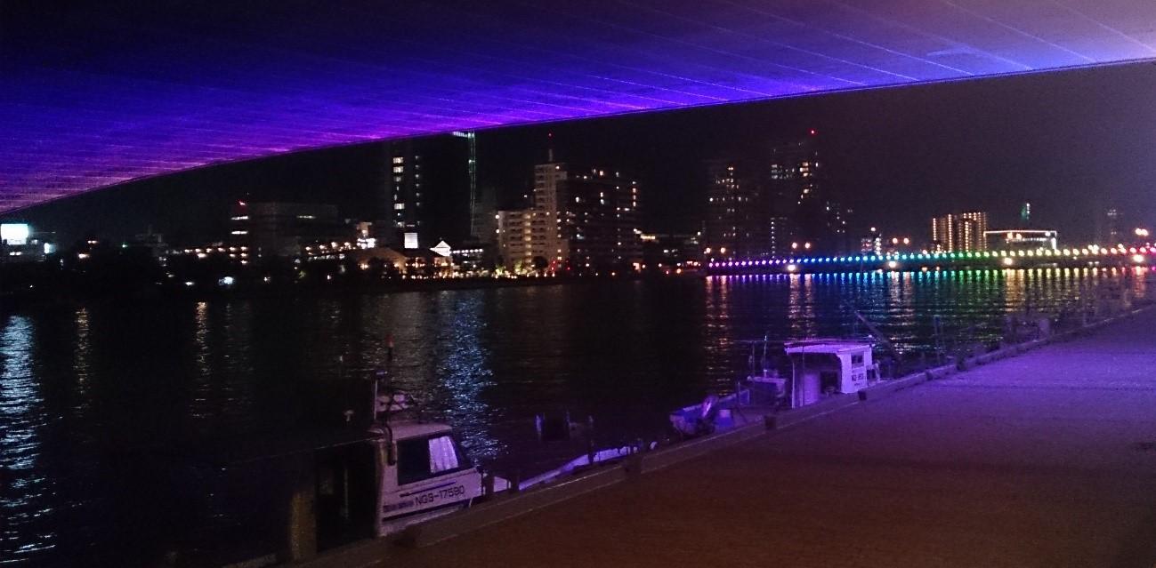 【期間限定】光の饗宴に感激!みなさん、夜は柳都大橋へ!!!