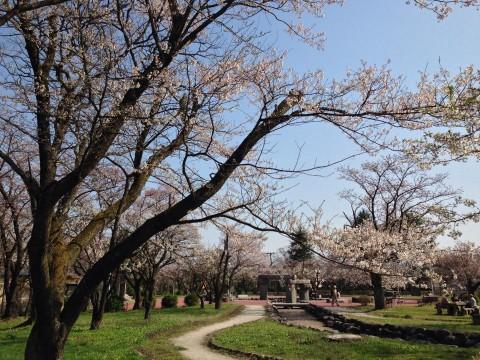 hanakoyomi04