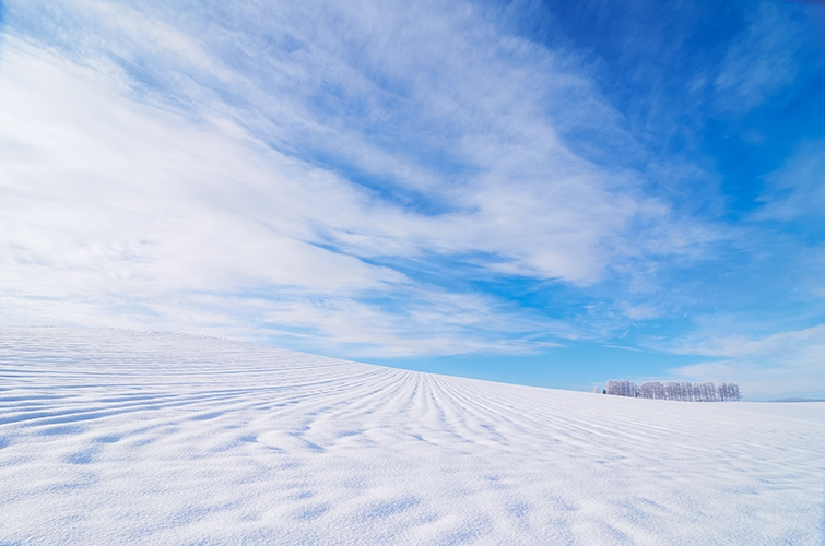 真夏に「かまくら」!?湯沢町苗場スキー場で5メートルの巨大な雪のかまくらを準備中!