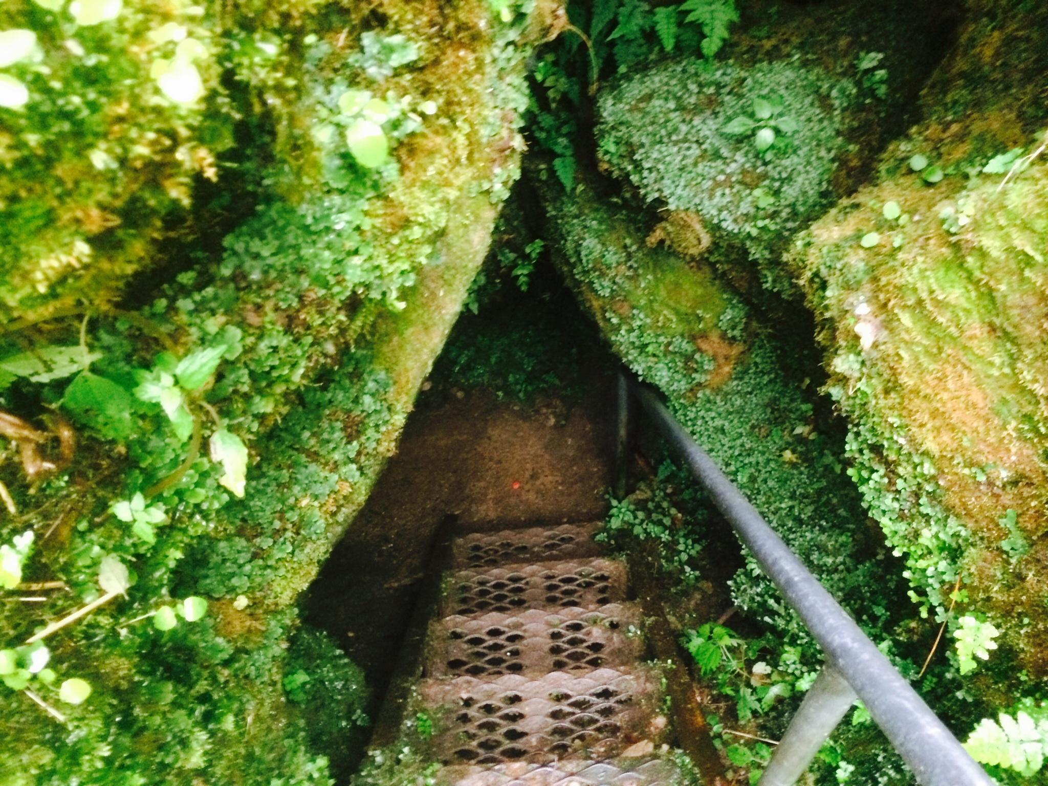 五泉市が誇る大秘境「大沢鍾乳洞」!懐中電灯必須の洞窟ダンジョンに突入!