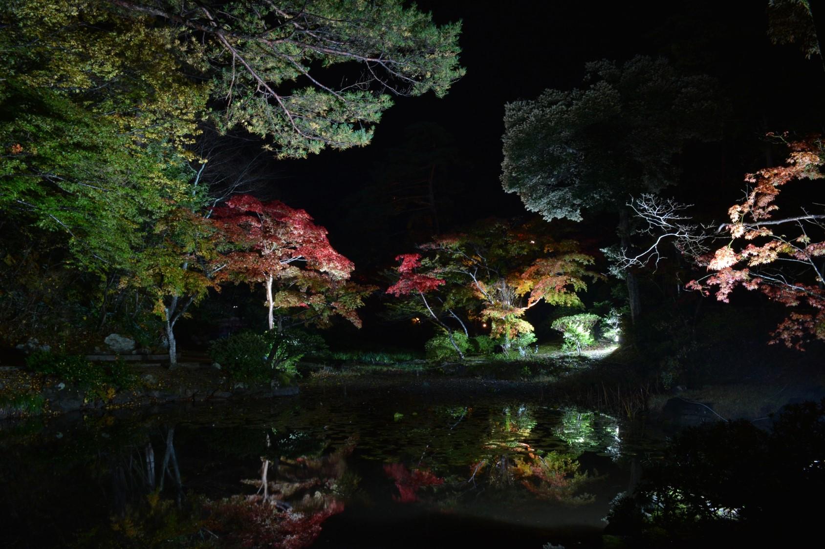 ~新潟もみじ紀行~色んな雰囲気の秋景色。お気に入りの場所を見つけよう!