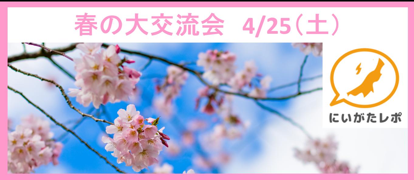 【告知】4/25(土)にいがたレポ春の大交流会開催!
