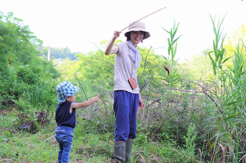 夏休みはザリガニ釣りに挑戦!新潟市西蒲区福井