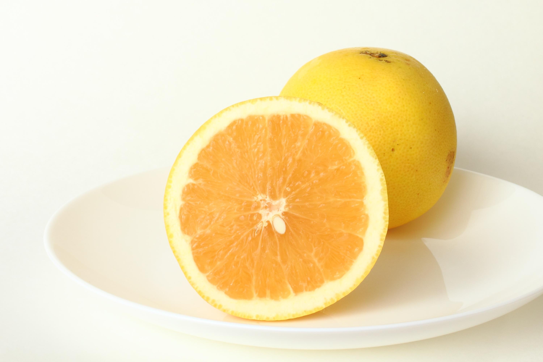 剤 グレープフルーツ 降圧