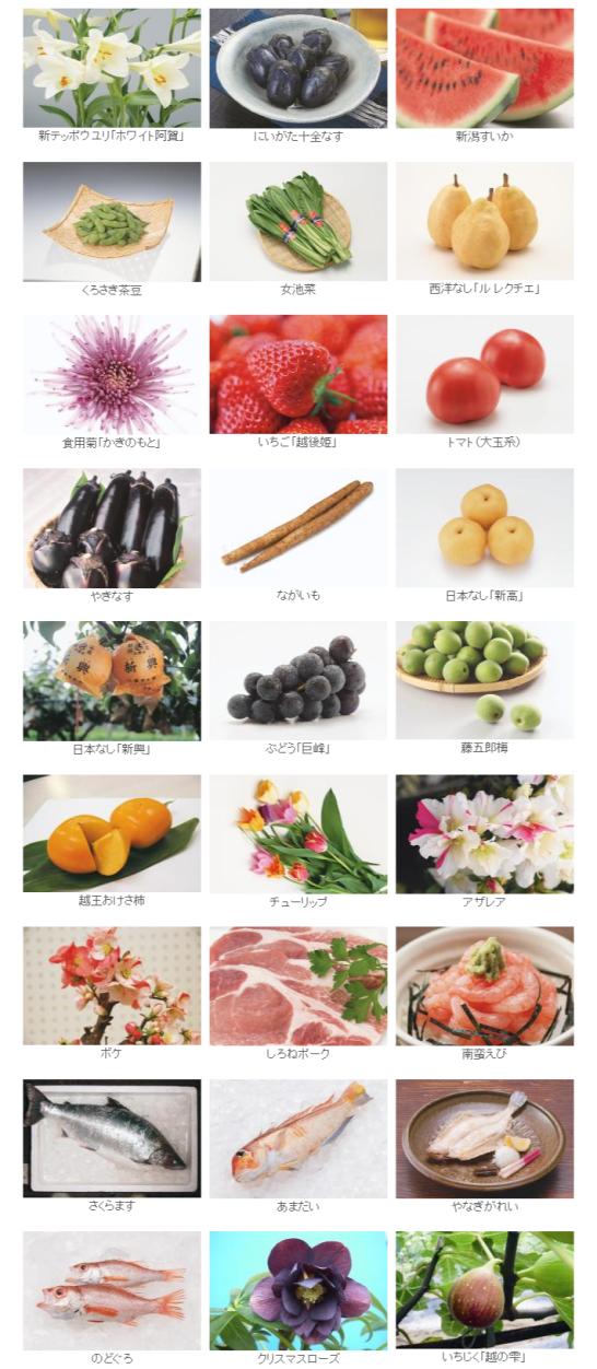 食と花の銘産品 新潟市