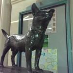 渋谷は「ハチ公」だけど、新潟の忠犬と言えば「タマ公」!? ほっこりエピソード