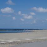 新潟砂丘だってなかなかのもんだ