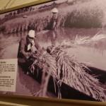潟との戦いと暮らしを感じる。「水の潟ログ」メイン会場に行ってきた