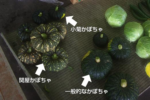 05_hakusan-market
