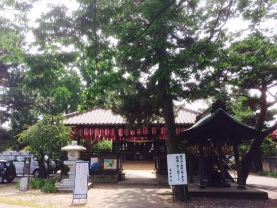sakatsume0701-2