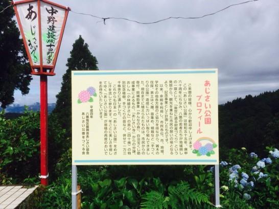 sakatsume140711-7