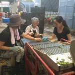消費量が日本一!新潟の誇りでもある黒埼茶豆の収穫作業の体験レポート!