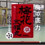 新潟県だけで放送された幻のCM!?梅花五福丸でガンガン元気!!