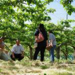 農家が集まることで、売り場の魅力を創出!/ひまわり産直協同組合【組合紹介】
